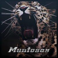 Montis_Muntosas