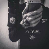 Tomis_Boxer