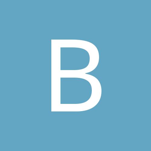 Bulves_Fry