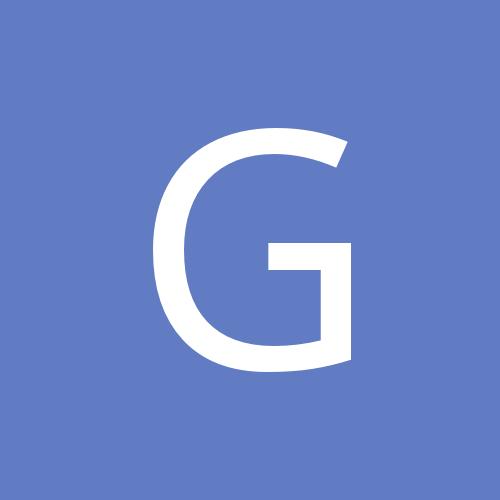 Gvidukas_Workout