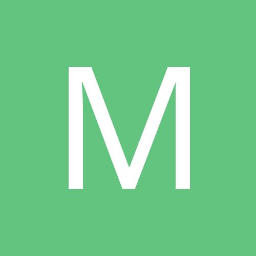 Manntas_Birrd