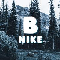 Blue_Nlke