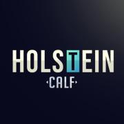 Holstein__Calf