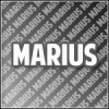 Marius_Monsteer