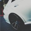 Grey_Maxton