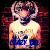 Crazy_Litee
