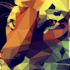 Rytisz_Carbon